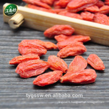Dried goji berries jiangnanhao Goji benefits of goji berry growing goji berries