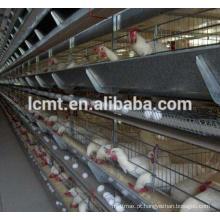 Bandeja automática das aves domésticas do alimentador de galinha para o sistema de alimentação automático da galinha