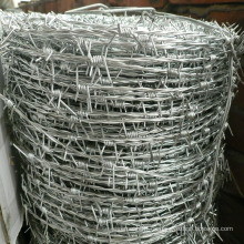 Alambre de púas de acero inoxidable de doble línea