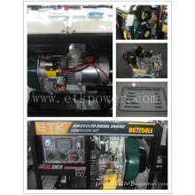 Power Einphasen Diesel Generator Set (6KW)