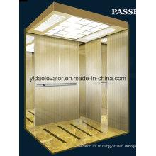 Ascenseur de maison de luxe en usine de Chine (JQ-B024)
