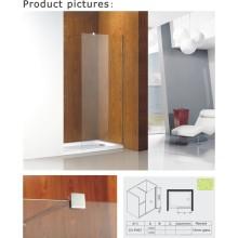 8mm / 10mm espesor de vidrio fijo Panel / puerta de la ducha (Cvp007)