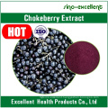 Black Aronia Chokeberry Extract