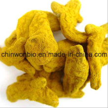 Turmeric Extract Powder Water Soluble Curcumin for Seasoning