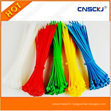 Self-Locking Nylon Cable Ties for Car Accessories