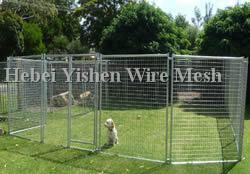 dog cage 002_