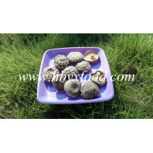 Smooth Shiitake Champignons 1kgs Pack avec bouchon 4-6cm et sans tige