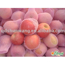 chinese fuji apple with high quality