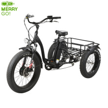 500W Front Drive Three Wheel Electric Tricycle for Adults