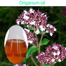 Масло душицы OEM / ODM чисто органическое Aromatherapy в навалом