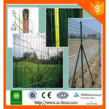 Les ventes de la plus haute qualité sont les meilleurs treillis en pvc holland vert fabriqués dans la société Anping Shunxing