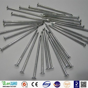 black common iron nail hot selling in 2017