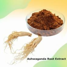 Enhance immunity 2.5% Withanolides Ashwaganda Root Extract
