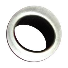 A forma personalizada do furo do título frio do carboneto de tungstênio morre