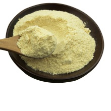 Artichoke Extract 5%Cynara scolymus extract 10:1