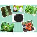 Fulvic Acid and Potassium Humate Microbial Fertilizer