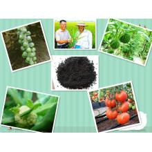 Humate de potassium organique 85% d'engrais soluble dans l'eau avec de l'acide fulvic à partir de la tourbière Léonardite