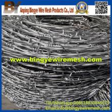 Bwg16 Single Eléctrico Galvanzied de alambre de púas