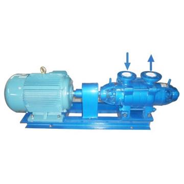 Bomba de água de alta temperatura série DG