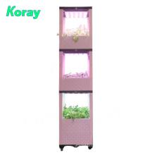 Indoor vertical planting system koray grow light Indoor Vegetable Garden Raised-Bed