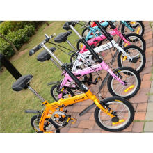 Multicolor Mini Kinder Foalding Bike