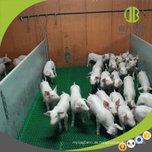 Viehbestands-Ausrüstungs-PVC-Brett-Schwein-Weaner-Kisten-Entwöhnungsstift für das Schützen von Ferkeln