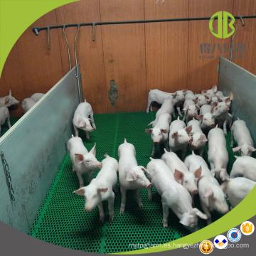 Tablero del PVC del equipo del ganado Tablero del destete del cerdo Weaner Pen para la protección de lechones