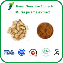 HPLC tested Brown fine Ptychopetalum olacoides Muria puama extract with good price