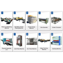 Veneer Production Line