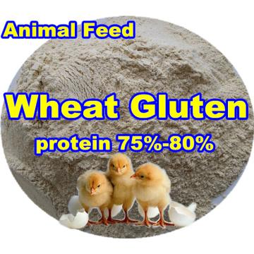 Gluten de trigo (proteína75-80) para el aditivo para piensos