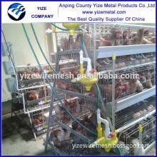 mesh for chicken coop price/chicken coop professional/chicken coop exhaust fans
