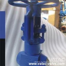 Válvula del globo de la central eléctrica de alta presión (J41)