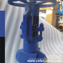 High Pressure Power Station Globe Valve (J41)