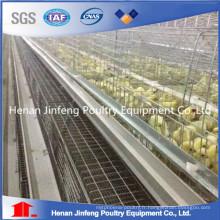 Cage de poulet de poules de conception automatique de haute qualité et bas prix