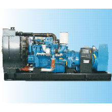 Groupe électrogène diesel 710kVA Mtu (50Hz)