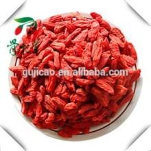 Wolfberry chinês / secas bagas de Goji / secas sementes de nêspera