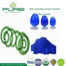 Niebieska spirulina Fikocyjanina w proszku