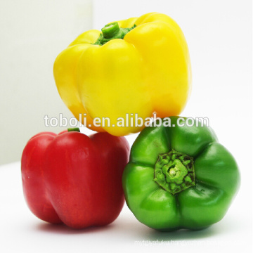Chinese sweet pepper