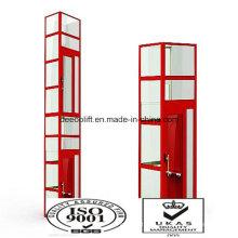 Schönheit Custom Design Sightseeing Lift