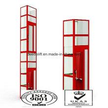 Beauty Custom Design Sightseeing Lift