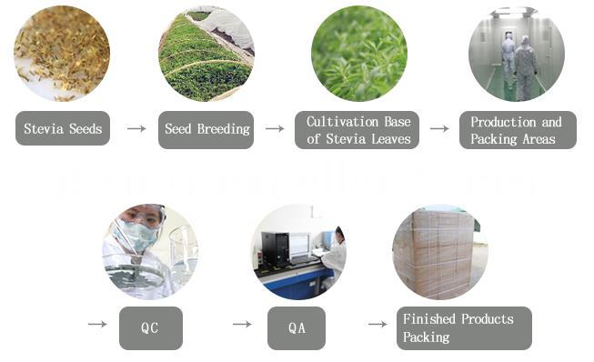 production flow chart of stevia