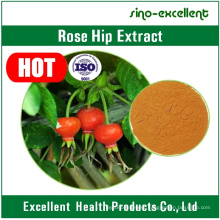 Rose Hip Fruit Extract Polyphenols25%