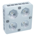 Plantas de interior hidropónicas 300W COB LED Grow Lighting