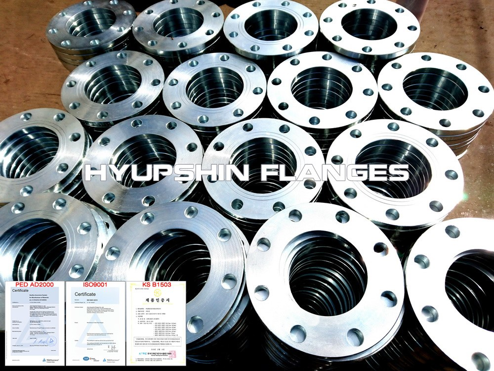 Hyupshin Flanges Ansi Backing Ring Plate