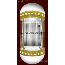 Капсульный тип Панорамный лифт с волосами из нержавеющей стали