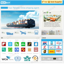 Professional Sea Freight Cargo Shipping to USA