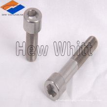 Titanium screws