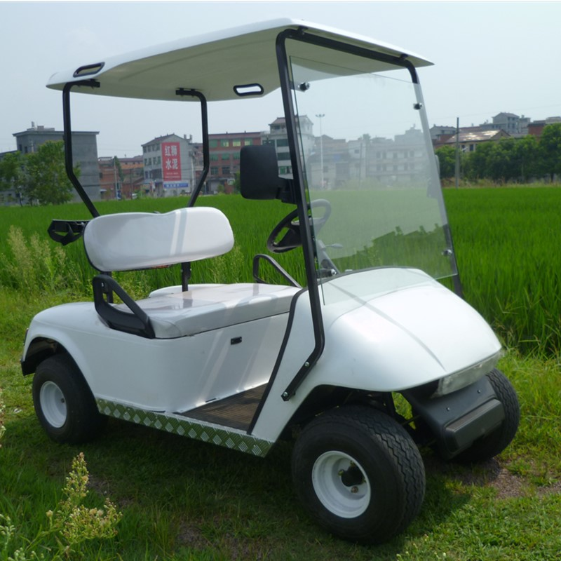 mini electric golf cart