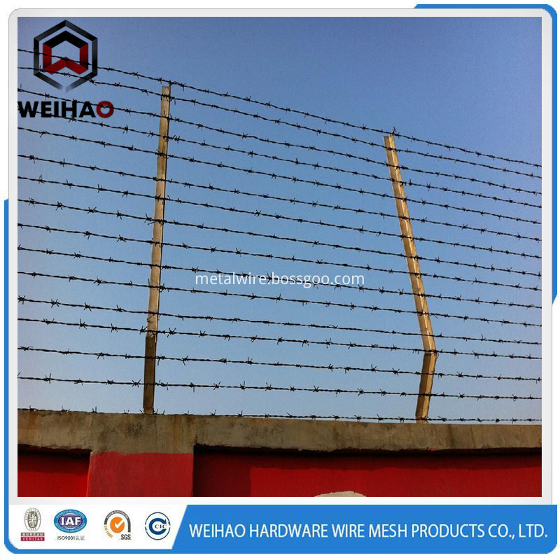 barbed wire nna