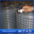 Painel de malha de arame soldado galvanizado no mercado da China